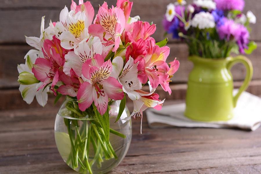 آبیاری باکس گل
